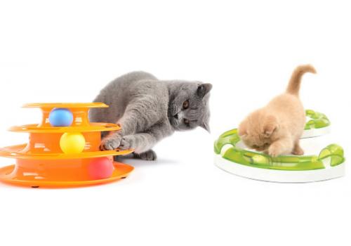 Нужно ли играть с кошками? Поговорим о современных интерактивных игрушках.
