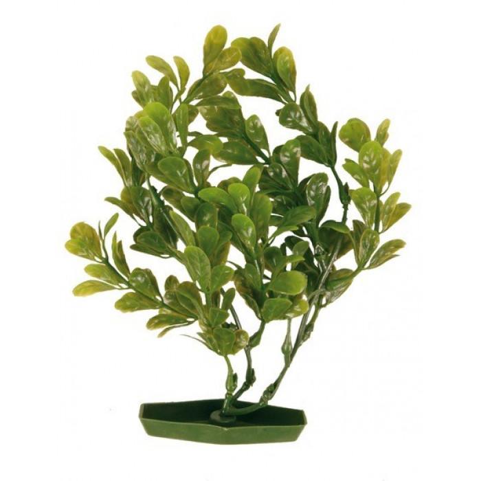 Растения для аквариума 6 шт., высота 17 см
