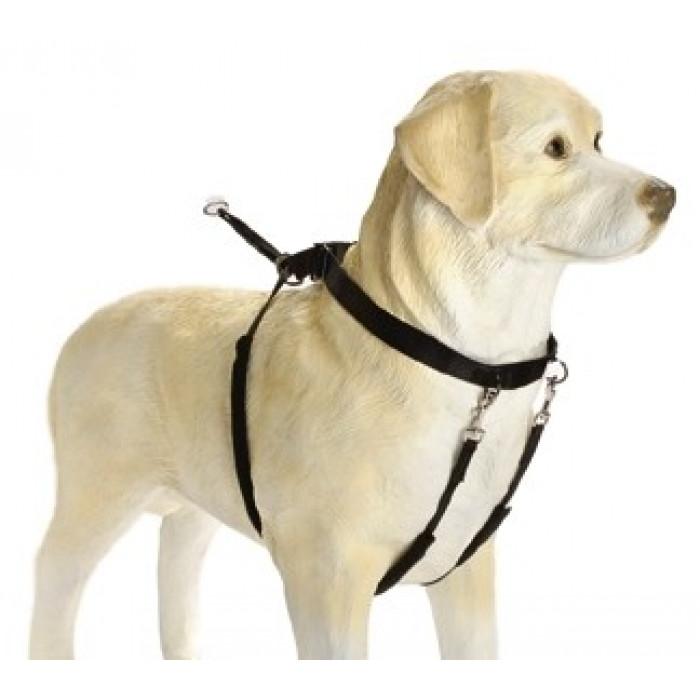 Шлейка для собак, нейлоновая, черная, 58x83 см