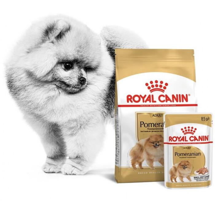 Корм Royal Canin Pomeranian Adult для Померанского Шпица старше 8 мес., 500 г + пауч в ПОДАРОК