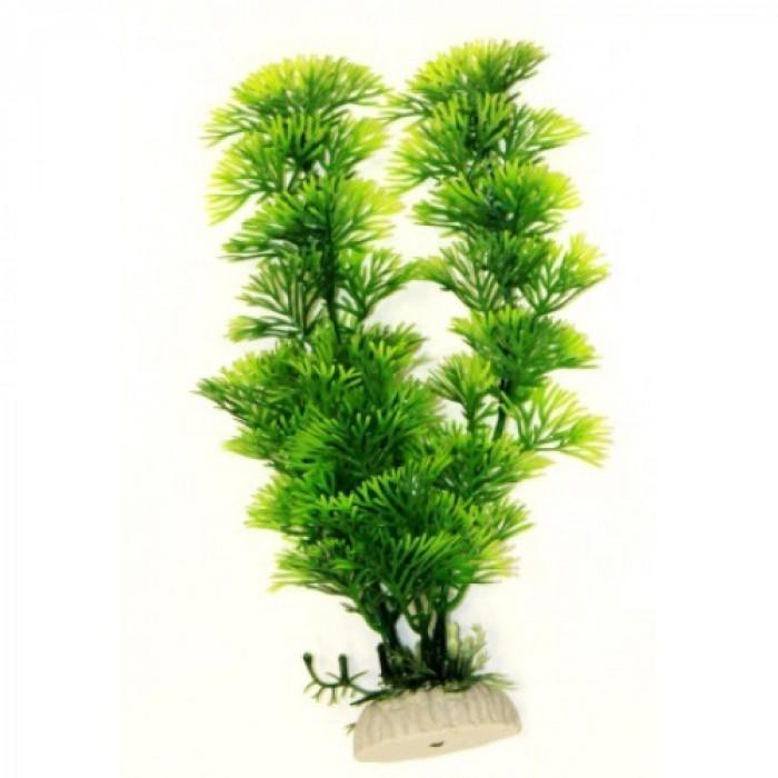 Растение пластиковое Перистолистник зеленый, 20 см