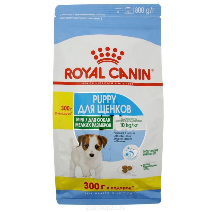 Корм Royal Canin Mini Puppy для щенков малых пород 2-10 мес., 500 г + 300 г в ПОДАРОК