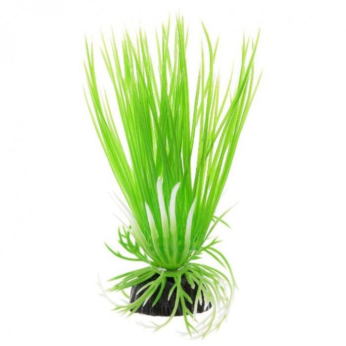 """Растение для аквариума Barbus """"Акорус"""", пластиковое, высота 10 см"""